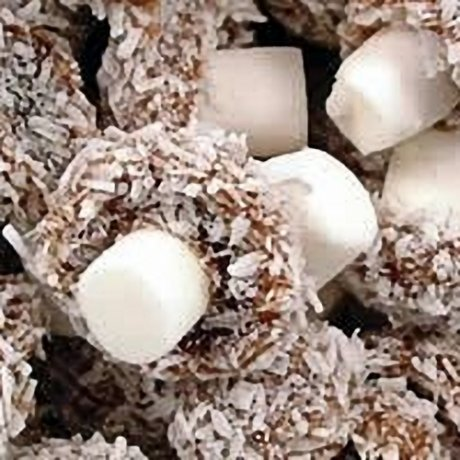 Taveners Coconut Mushrooms